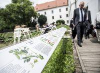 BTHA-Rektoren-Brno-2018-06-22-Sigut-33